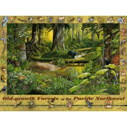 Old-growth Forests of the Pacific Northwest